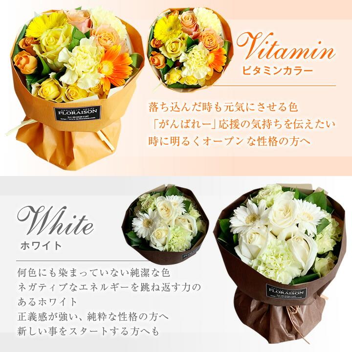 ビタミンカラー・ホワイト