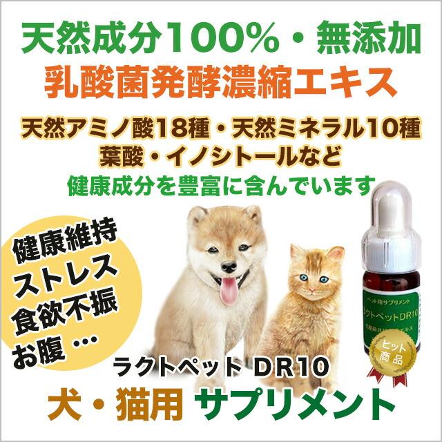 ペット サプリメント ラクトペット DR10【犬・猫・フェレット用 天然成分100% 健康のためのサプリ/栄養補助】