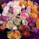 こだわりのバラ Rose Collection