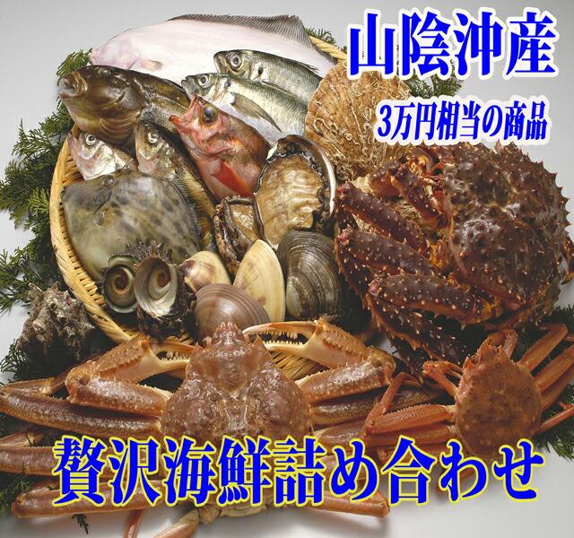 山陰 魚介セット 鮮魚