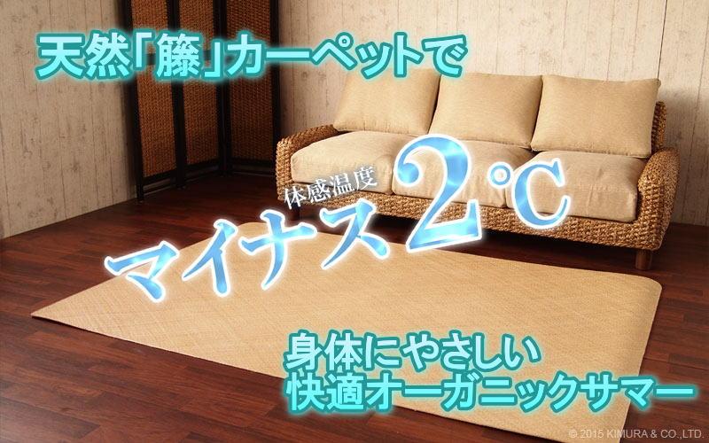 体感温度-2℃の快適オーガニックサマー ロハスなライフスタイル