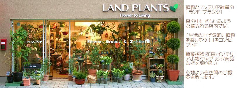 LAND PLANTS甲子園口店 兵庫県西宮市 JR甲子園口駅より 歩いて5分