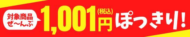 対象商品1001円ぽっきり