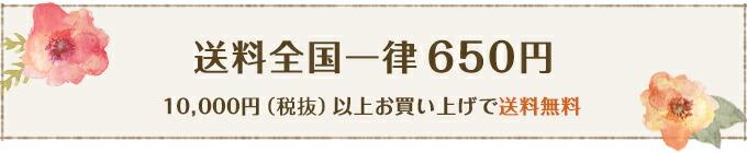 送料全国一律650円 1万円以上で送料無料