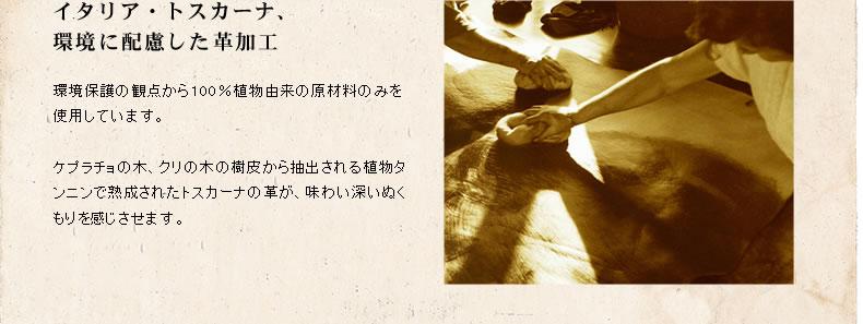img_09.jpg