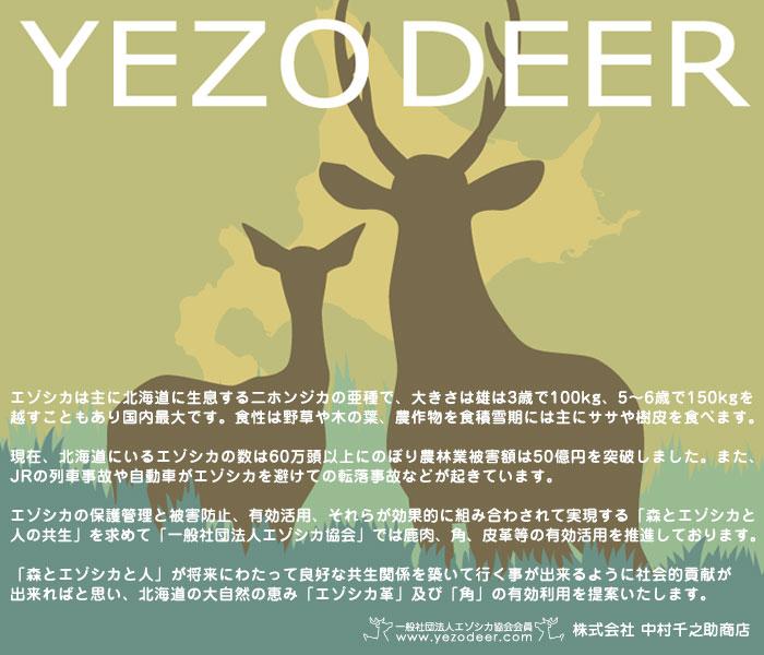 【YEZO DEER】エゾシカ