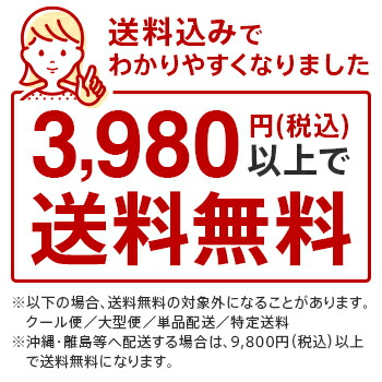 3980円送料込み