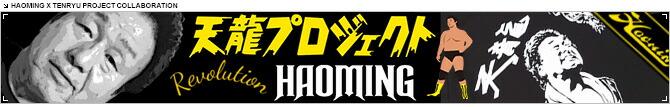 HAOMING(ハオミン)天龍源一郎