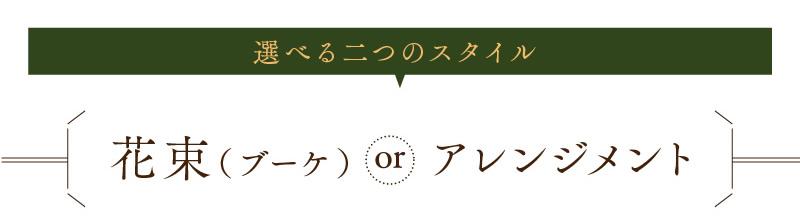 選べる二つのスタイル