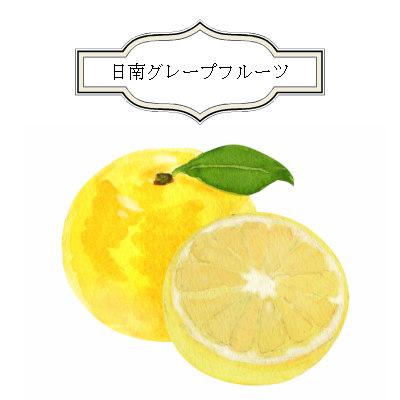 柚子ミスト