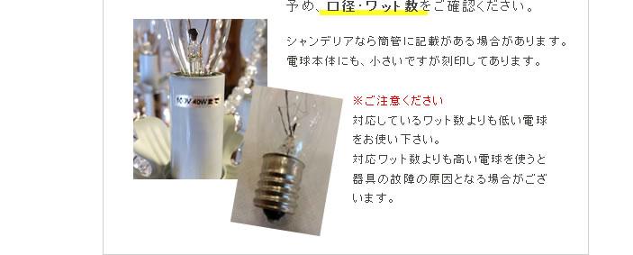 電球の入手方法�