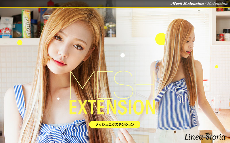 Wig And Hair Extension Linea Storia Rakuten Global Market Mesh