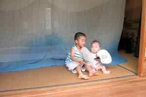 蚊帳と子どもたち
