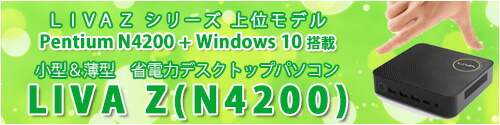 LIVA Z N4200 全商品一覧