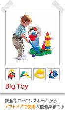Big Toy[ビッグトイ]