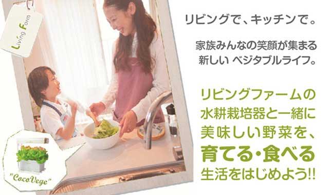 リビングで,キッチンで,リビングファームの水耕栽培
