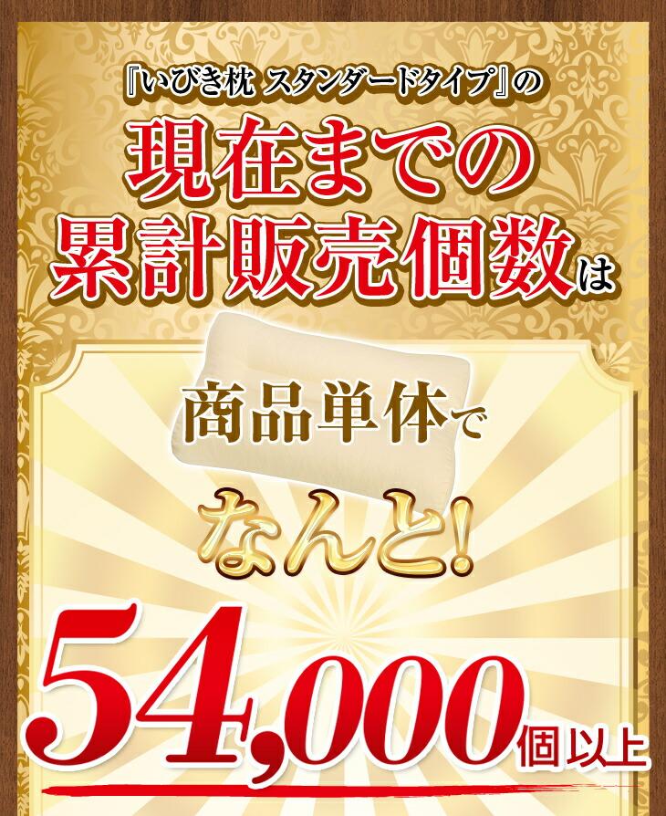累計販売個数は54,000個以上!
