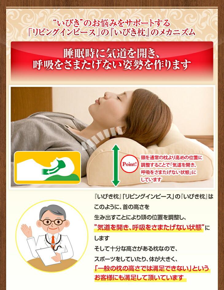 睡眠時に気道を開き、呼吸をさまたげない姿勢を作ります