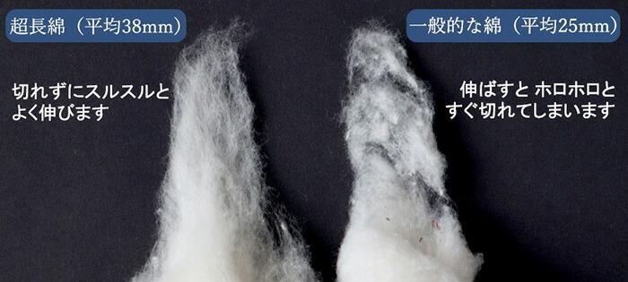 平均35mm以上、通常の繊維の約1.4倍の長さがある綿糸を超長綿といい、全世界の綿花の5%程度の生産量がありません。糸が細ければ細いほど、生地は柔らかく、光沢も出やすくなります。一般的なカバーは40番糸、高級なものでも60番手糸ですが、こちらのカバーは極細80番手糸を使用。細い糸をつくるためには原料となる綿花の繊維が長いものを使う必要があり、長ければ長いほど、品質が高く、安定したものになります。