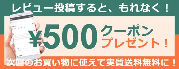 レビューで500円クーポンキャンペーン