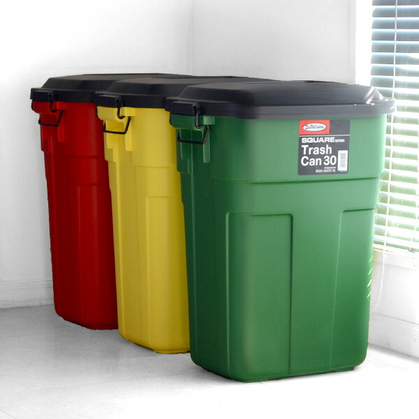 Trash Bin With Lid Square Trash Can 30L (stylish Dust Box Litter Box  Sensible Living
