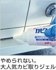 風呂 カビ取り剤 カビとりジェル カビとり一発 業務用 洗剤 500g