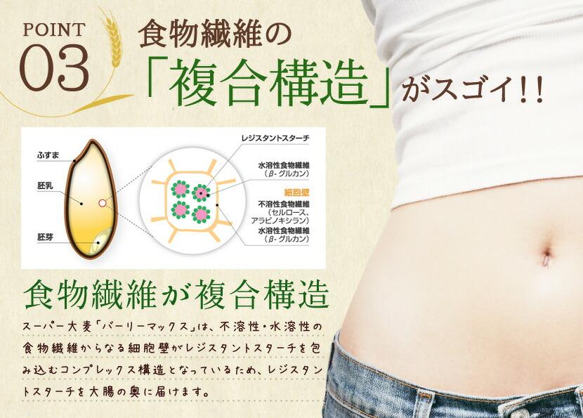 ポイント3. 食物繊維の「複雑構造」がスゴイ!!