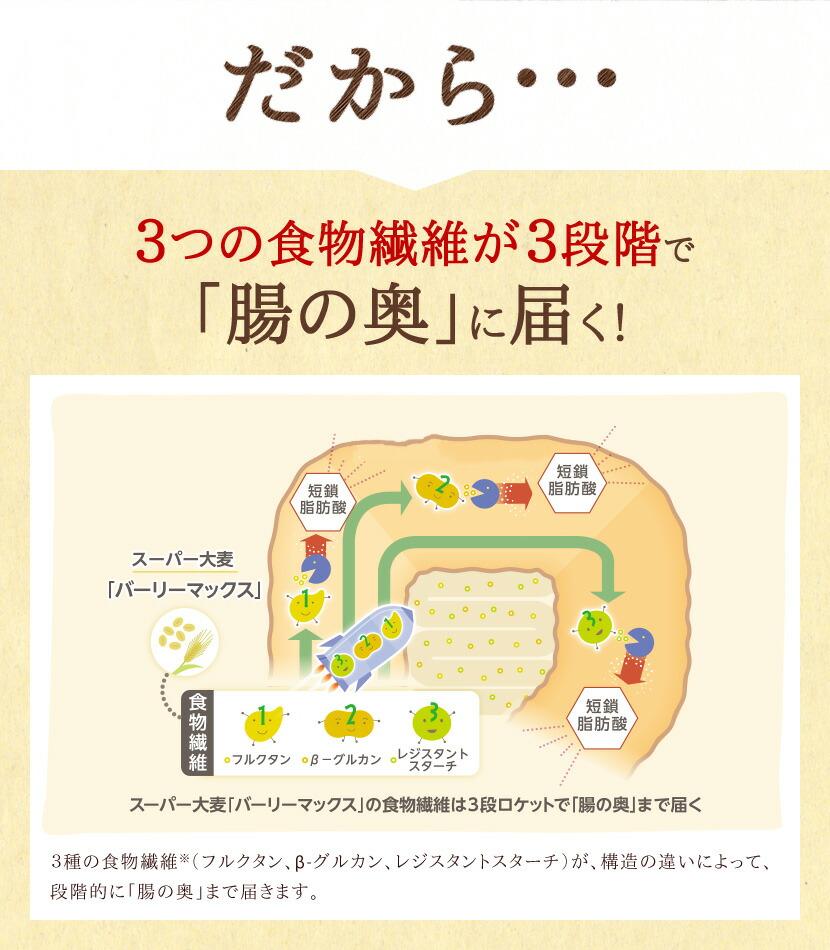 だから3つの食物繊維が3段階で「腸の奥」に届く!