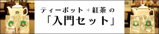 紅茶入門セット(茶こし付きティーポット)