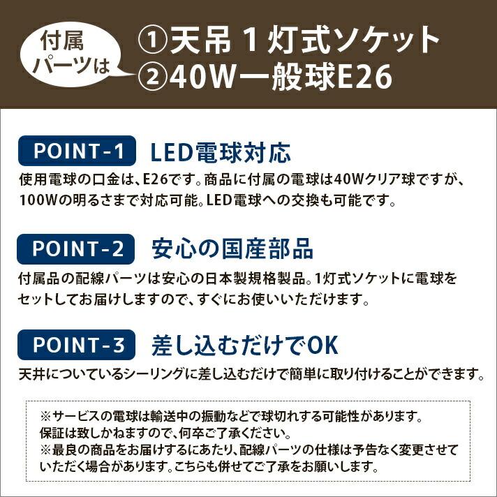 天吊1灯 / 黒コード / 40W一般球