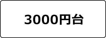 3000円~399円ドレス