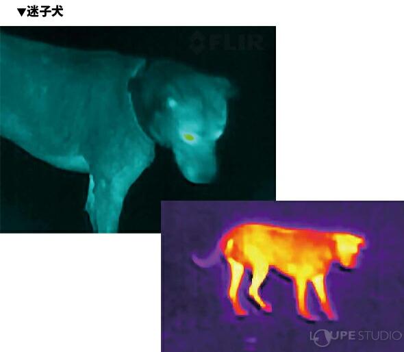 用途に合わせたバリエーション豊富なカラー画像表示選択