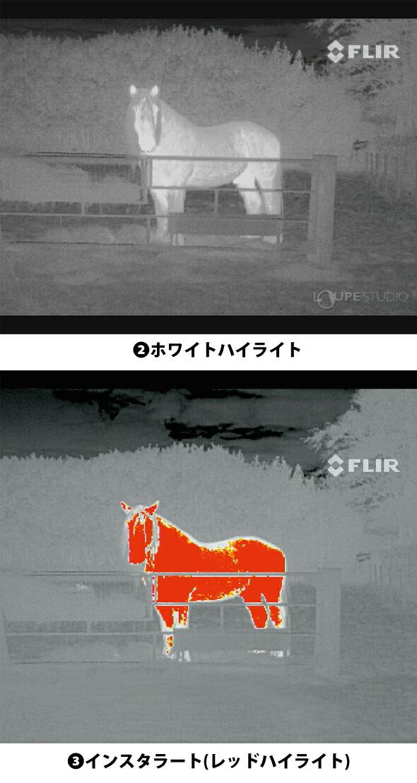 3つの画像表示