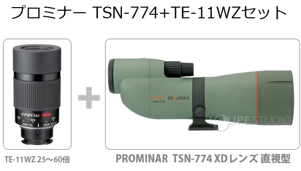 �ץ�ߥʡ� TSN-774+TE-11WZ���å�