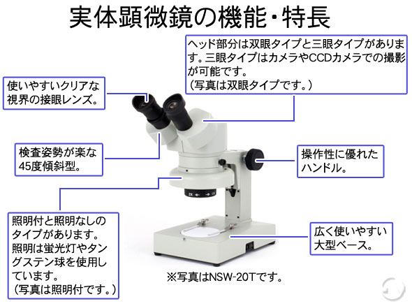 固定、変倍式実体顕微鏡の特長