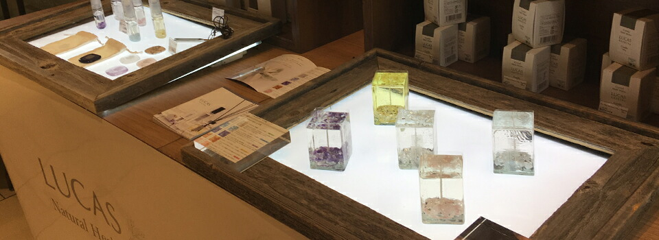 東急ハンズ横浜店にて、LUCASを展示販売しております!