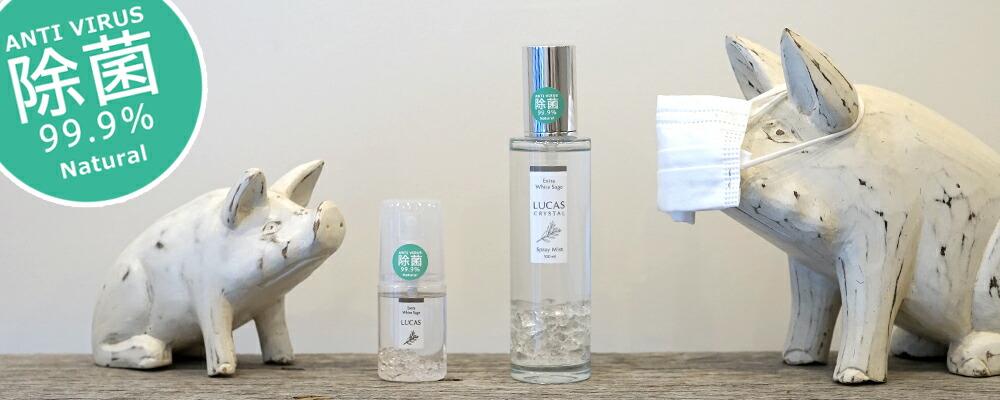 LUCAS マスク除菌スプレー(除菌率99.9%)