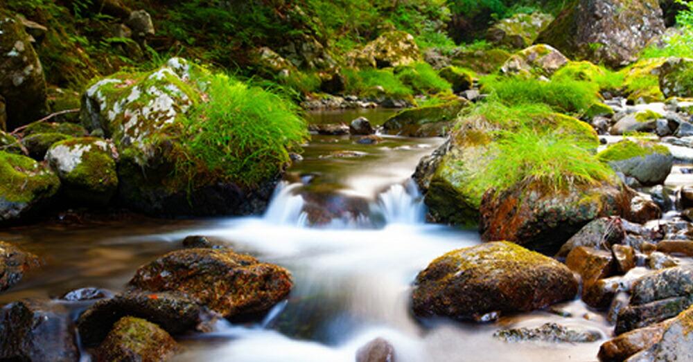 7.自然で浄化する方法