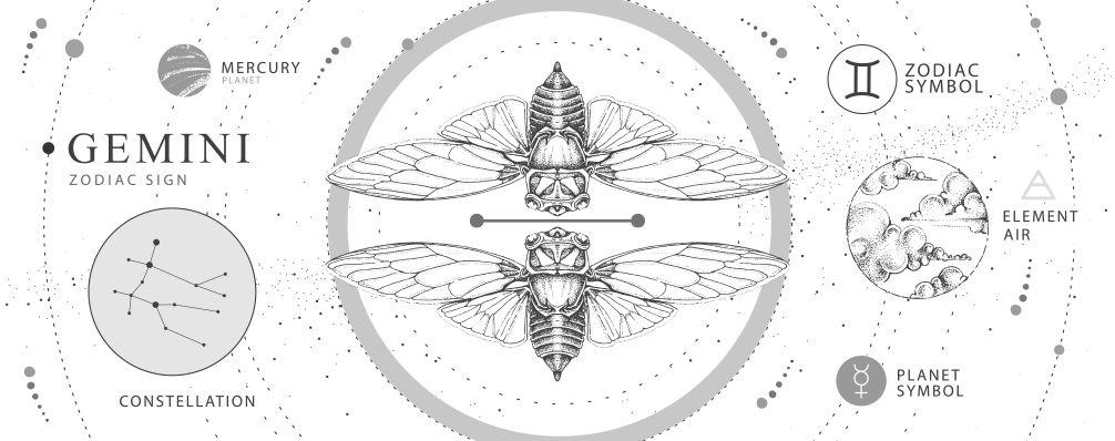 月星座別おすすめの願い事とセルフケア 双子座 Gemini (5/21〜6/21)