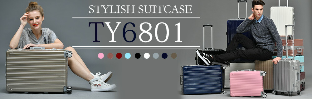 フレームタイプTY6801