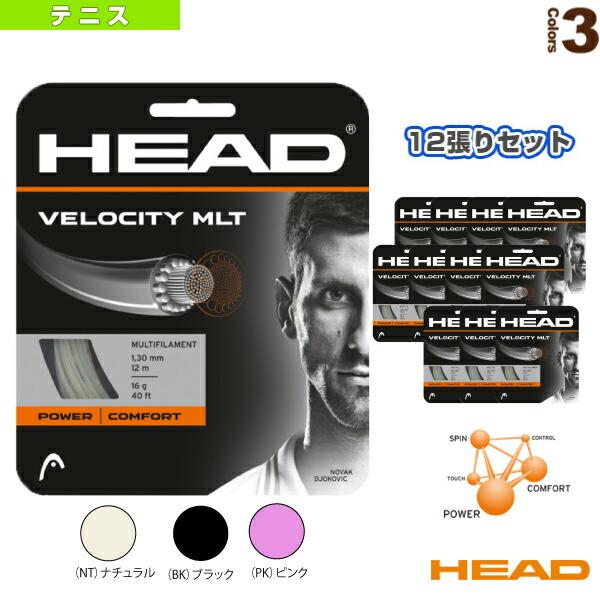 『12張単位』Velocity MLT/ベロシティ・マルチ(281404)