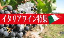 多様な個性と品種イタリアワイン特集!