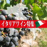 多様な個性と品種 イタリアワイン特集