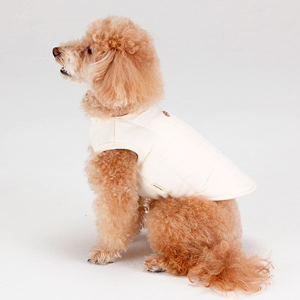 Dog clothes (thermal, down for bawtie) of the mother