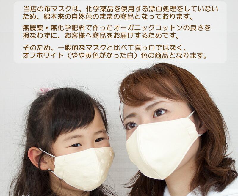 布マスクの大人着用写真