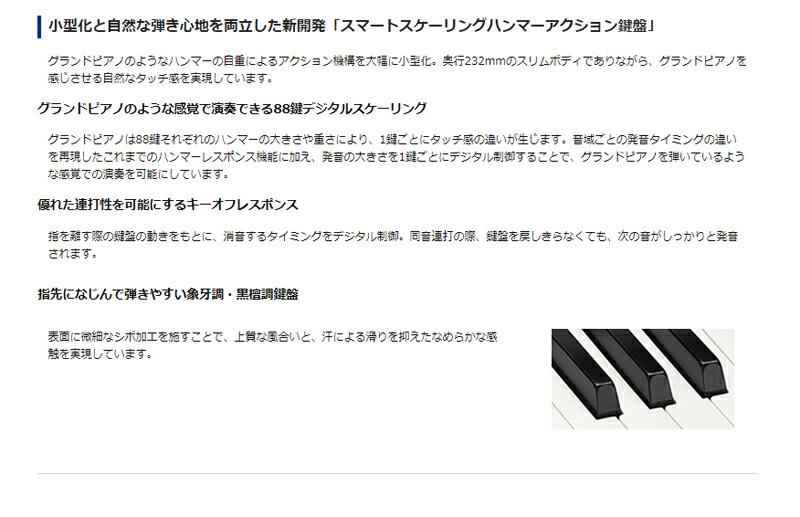CASIO カシオ PX-S1000  説明4