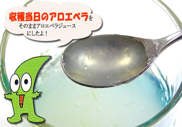 アロエジュース沖縄産アロエベラ