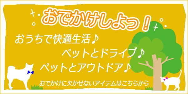 夏→秋 おでかけ