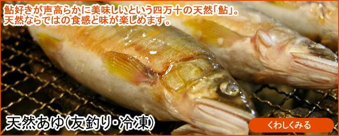 天然あゆ(友釣り・冷凍)
