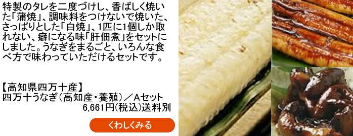 四万十うなぎ(高知産・養殖)/Aセット